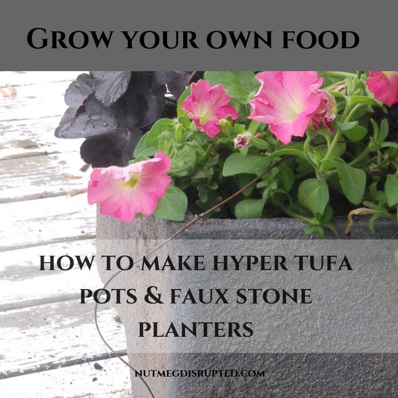 Grow Your Own Food Making Hypertufa Faux Stone Planters on Nutmeg Disrupted