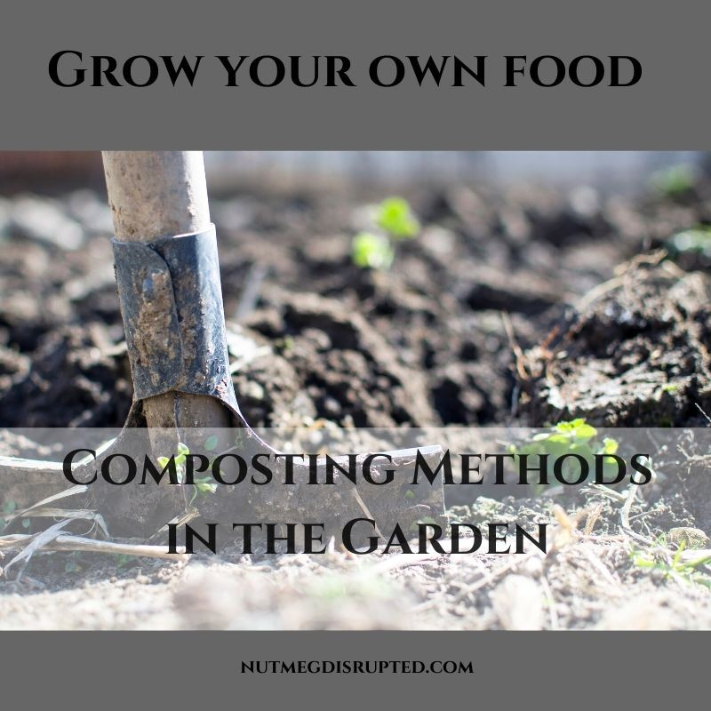 Grow Your Own Food Composting Methods in The Garden