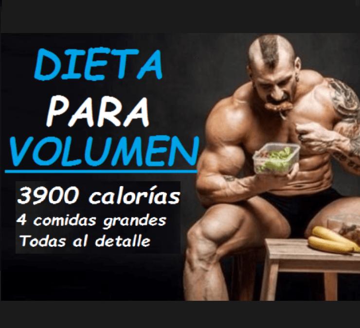 Dieta de volumen