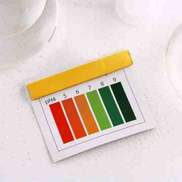 pH test strip