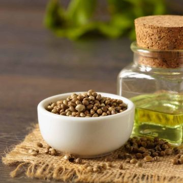 Picture of hemp seeds and hemp oil on a wooden table