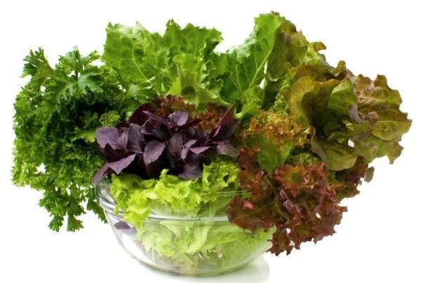 verduras-hoja-verde