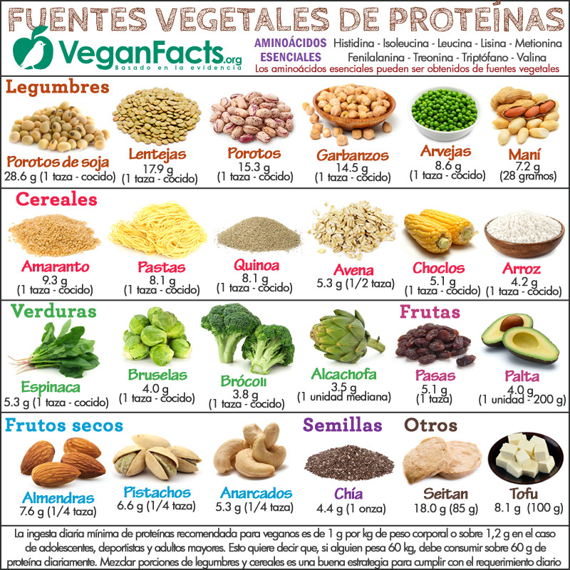 Frutas Altas En Proteinas