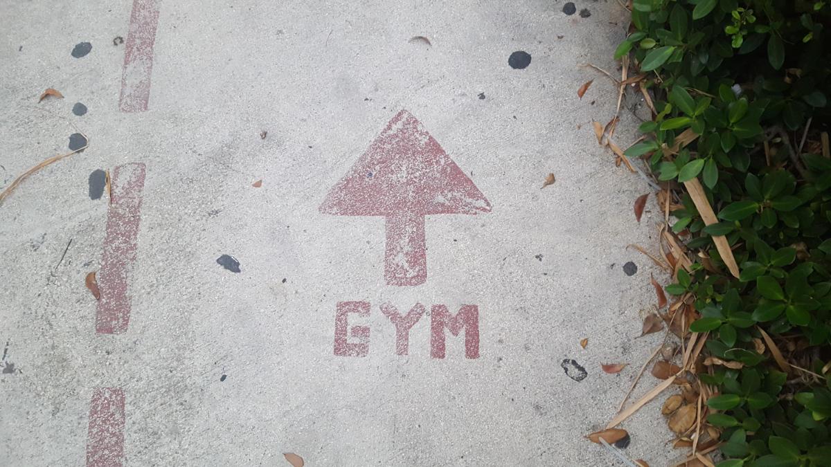 耐力訓練-阻力運動-基因表現-健康