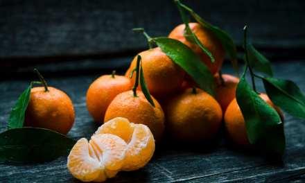 非時香菓是橘子 2000 年前稱呼,也是今日蜜柑的前身喔!