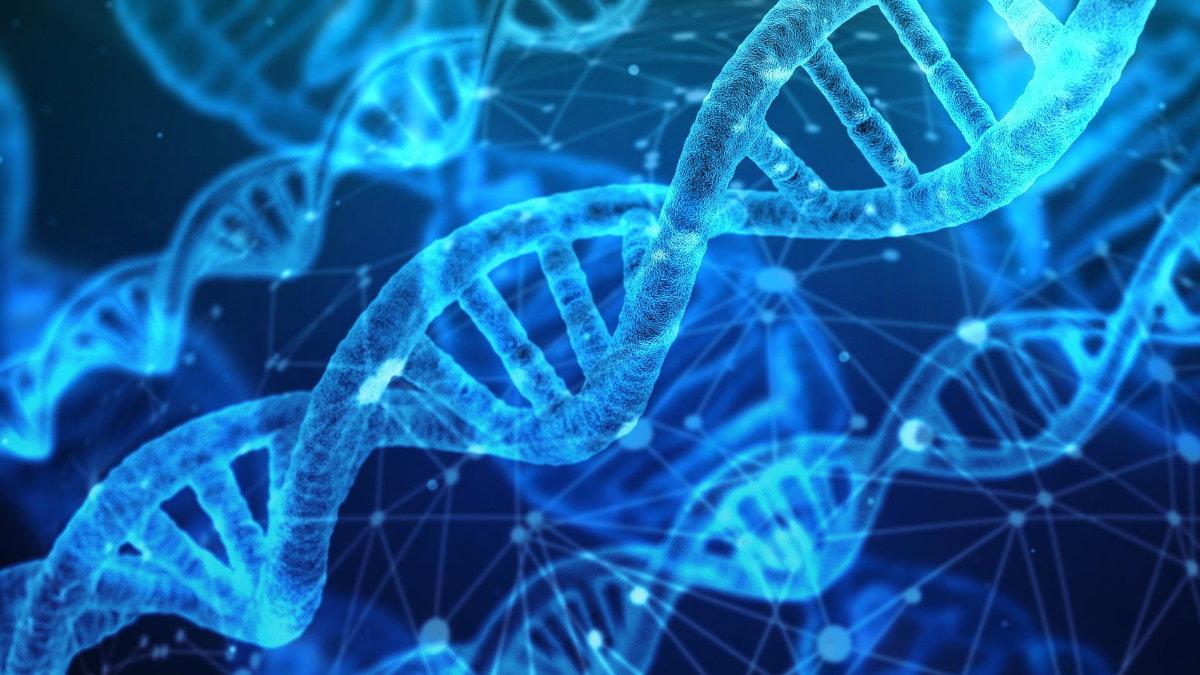 基因檢測-個人化營養-DNA