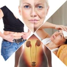 menopause-s5-symptoms