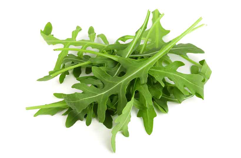 Picture of Green Arugula Leaves in a Pile.