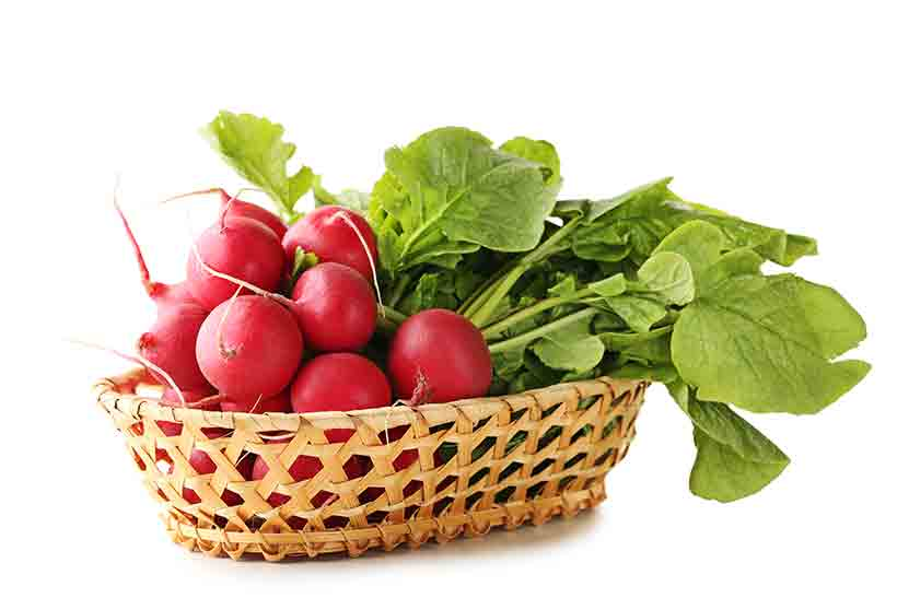 Red Radishes and Their Leaves in a Basket.