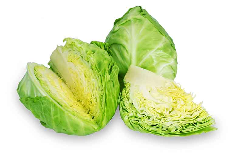 Whole Green Cabbage Cut Into Pieces.