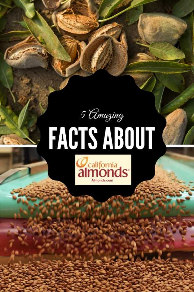 5 facts about almonds