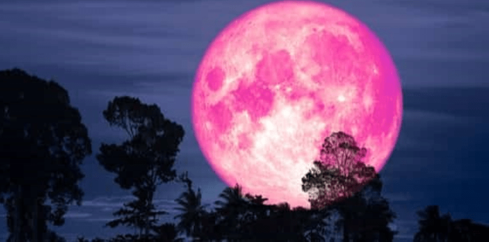 Lunar Eclipse ◎ June 5, 2020 ⋆ Nutritional Diversity
