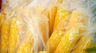 Beautiful, bright corn