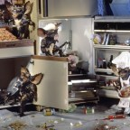 What the Kids Do During the Summer in the Kitchen