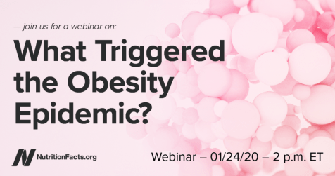 Obesity webinar