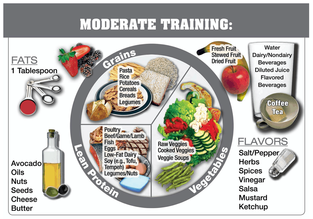 example plate for moderate training day
