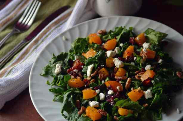 Roasted Butternut Squash and cranberry salad side angle