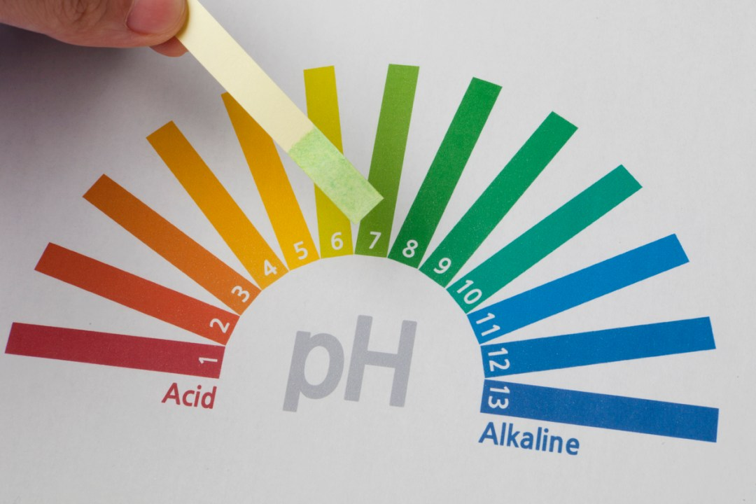 ph Scale and Testing Strip