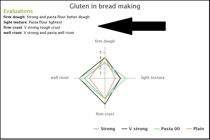 Food Investigation – flour for bread NEA 1 | The Nutrition Program Blog