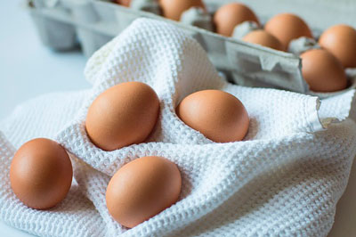 eggs-protein