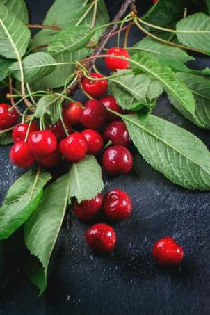 Cherries and leaves
