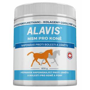 ALAVIS MSM pre kone + vitamin C 600 g
