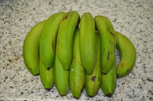 Banana Dwarf Cavendish