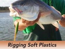 Pro-Tip-Rig-Soft-Plastics