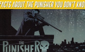 unknown punisher facts