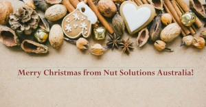 Merry Christmas from Nut Solutions Australia