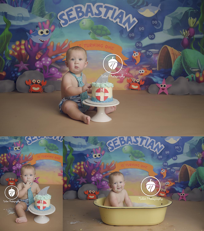 Baby Shark Cake Smash