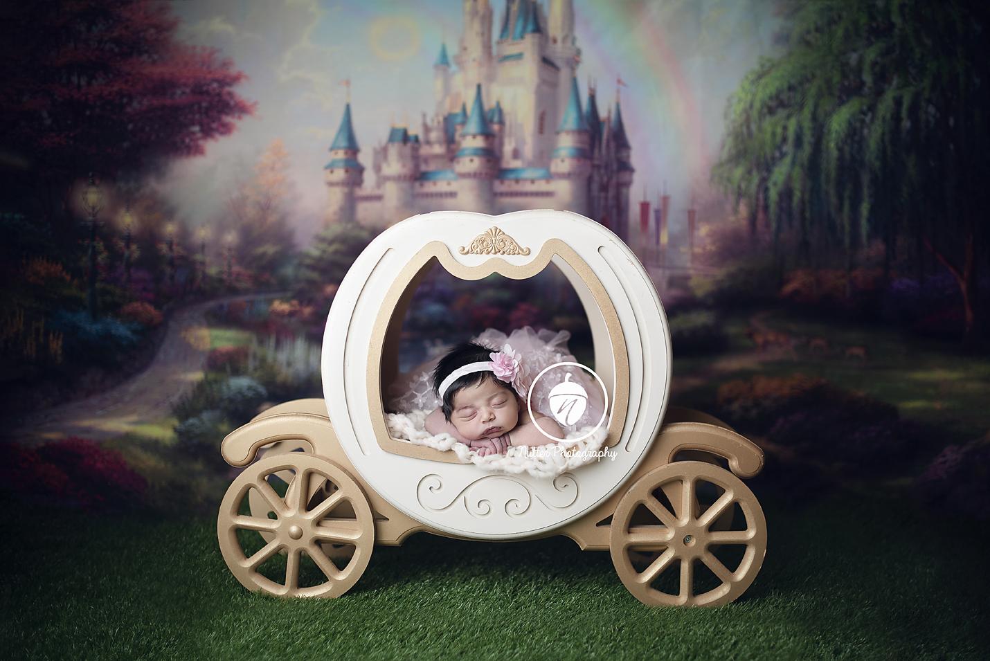Cinderella baby carriage
