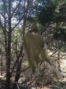 Ghost hanging in tree while hiking at Dana Peak Park