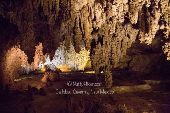 Carlsbad-Caverns-New-Mexico-3