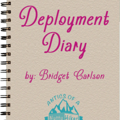Deployment Diary: Almost through with NTC