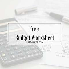 Free Budget Worksheet