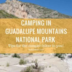 Guadalupe Mountains National Park | Salt Flat, Texas