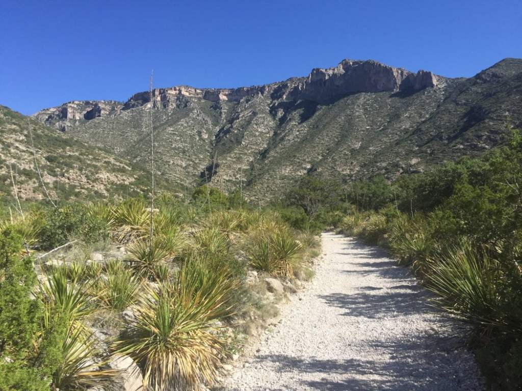 McKittrick Canyon Trail at Guadalupe Mountain National Park in Texas