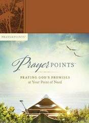 Book Review: Prayer Points