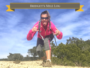 Bridget's 2200 Mile for Ptsd Log