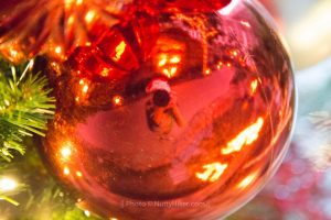 Reflection in Christmas Ball. Photo copyright Fine Art by Bridget TexasPhotog.com
