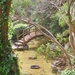 Zilker Botanical Garden in Austin Texas