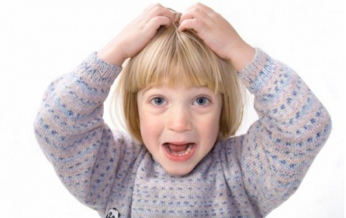 Вши у ребенка - чем лечить педикулез у детей