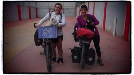 Kör köpeği ile seyahat edenler de var :)