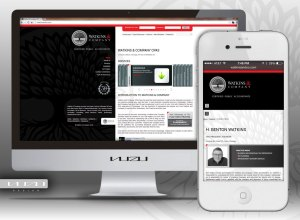 Watkins & Company Website REDesign Project