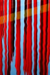 Red Reeds by Willa Friedman Copyright © 2013