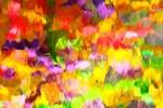 Amie Tannenbaum - D'après Monet