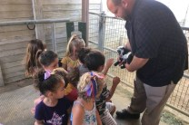 Teacher showing baby goat to students