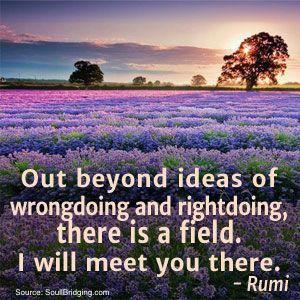 rumi-field-quote-nature