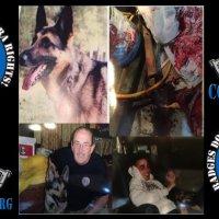 New York SWAT Team Executes War Vet's Dog Just Days Before Christmas